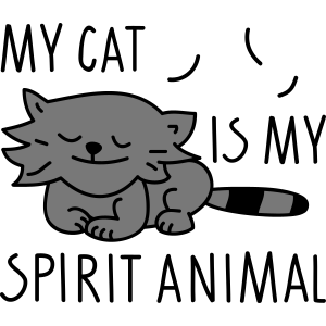 Katze als Spirit animal