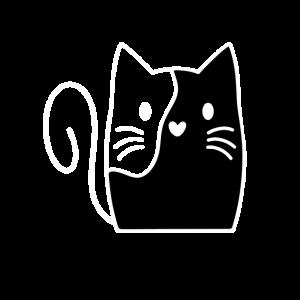 katze Haustier Cat Kitty Sweet niedlich