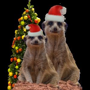 Erdmaennchen Weihnachten Lustiges Kindershirt