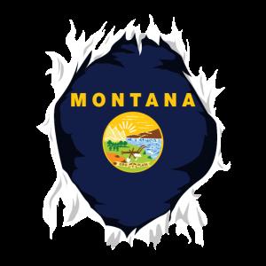 Montana Jersey | Geschenk für Montanan, MT Native
