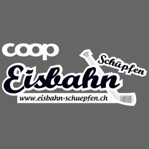 Coop-Eisbahn Schüpfen invertiert