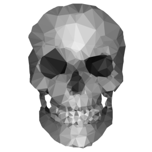 Polygons skull