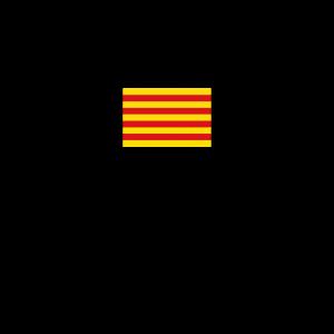 Katalonien Barcelona katalanisch Unabhängigkeit