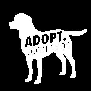 Adopt dog dont shop, Hunde adoptieren, Dogs
