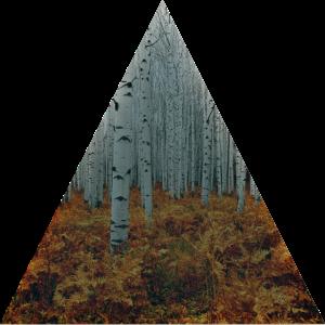 Dreieck / Bohrer