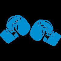 Boxhandschuh 16127