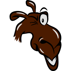 Kamel witzig