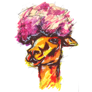 Funky Alpaca