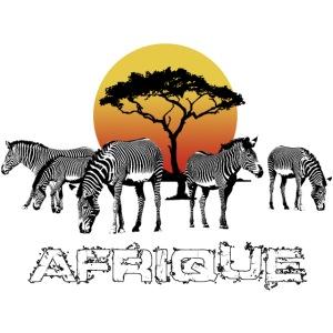 Zebras Afrika Wild Pferde Equus Serengeti Safari