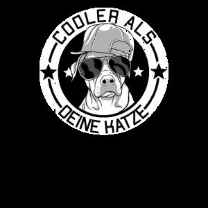 Labrador Hunde Sprüche Shirt für Hundebesitzer