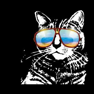 Katze mit sonnebrille uraub geschenk