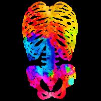 Swirly Skeleton