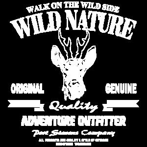Rehbock - Deer