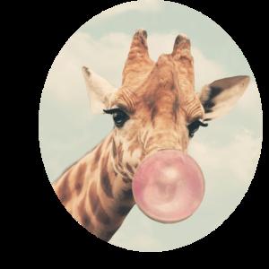 giraffe614141_22_orig_kopie