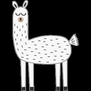 Lama Llama weiß