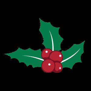 Weihnachten Mistel Mistelzweig