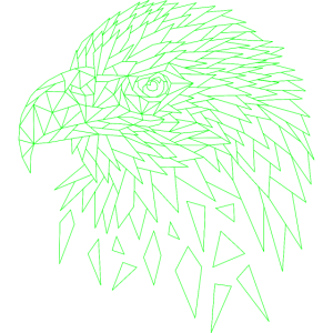 Seeadler Adler geometrisch Polygone Geometrie