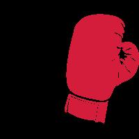 boxhandschuhe_02