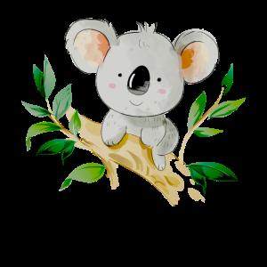 Koala Bär isst Bambus Koalabär sitzt auf Baum