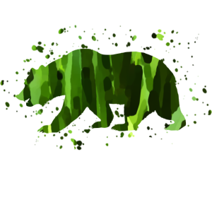 Wildnis Bär