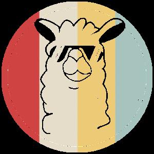 Alpaka Lama