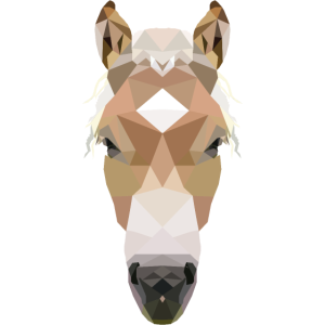 Haflinger, Pferdekopf Polygon