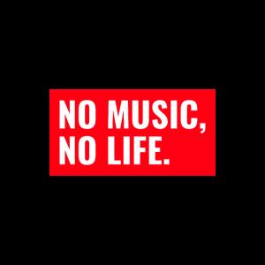 Music i love music