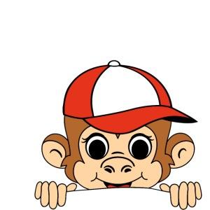 kiekeboe aapje met pet