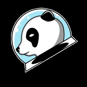 Panda glass ball