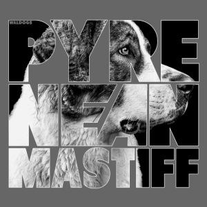 Pyrenean Mastiff II