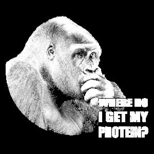 Veganer Gorilla wo bekommt er sein Protein her