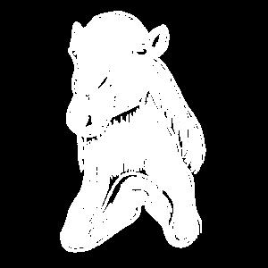 Kamel Art Illustration Dromedar