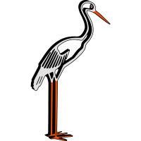 storch 3D