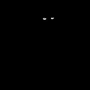 katzen oktopus katze krake tintenfisch katzendame