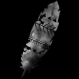 Scandinavian Feather