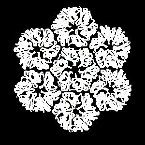 Protein Molekül Struktur Biologie
