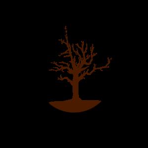 Zeit des Baumes