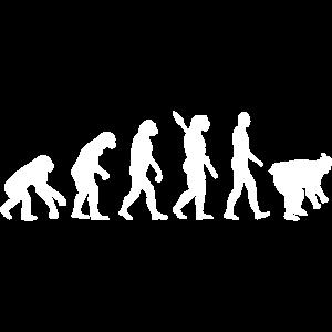 Evolution Sumo