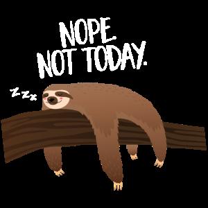 Sleeping Sloth | Nope. Not Today.