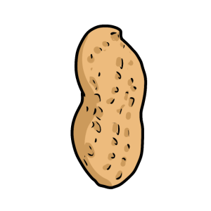 Erdnuss Nuss Nüsse Speise Nahrung