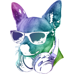 DJ Chihuahua