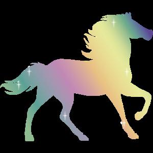 Einhornfarben - Pferd - Fantasie