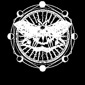 Tarot Kartenlesen Motte