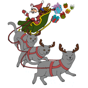 Britisch Kurzhaar Katze Weihnachten