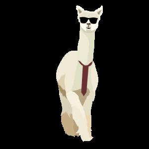 Business Alpaka mit Sonnenbrille   Alpaca   Paca