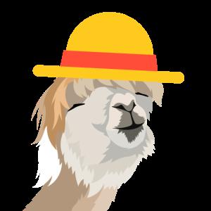 Alpaka mit Strohhut | Alpaca | Paca