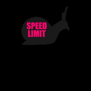 Schnecke Geschwindigkeit laufen Tier Speed Haus