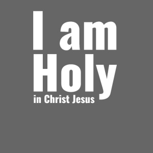 I am Holy in Christ Jesus