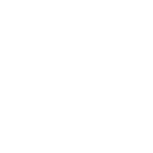 Cyber Security Experte