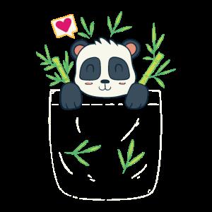 Panda In Der Brusttasche